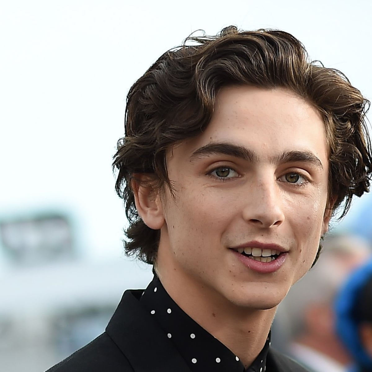 Leave Timothee Chalamet Alone Why What Happens On A Plane Should Stay On A Plane Film The Guardian