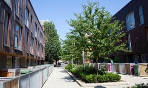 Street trees in Bethnal Green, London.