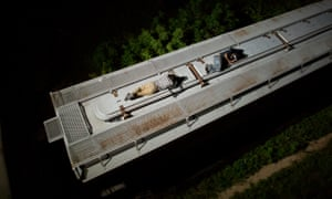 Central American migrants sleep atop a moving freight train as it heads north from Arriaga toward Chahuites, Mexico.