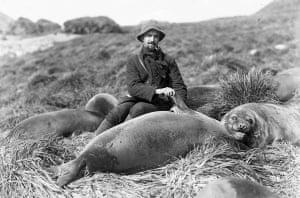 Arthur Sawyer and sea elephant pup