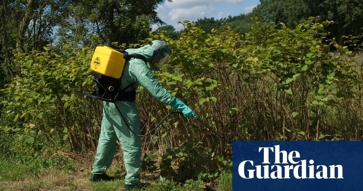 Invasive species have cost UK at least £5bn since 1970s, study reveals