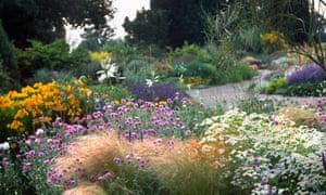The gravel garden at Beth Chatto's garden at Elmstead in Essex.
