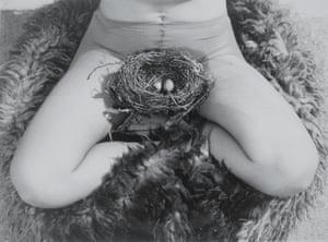 Nest, 1979 by Birgit Jürgenssen.