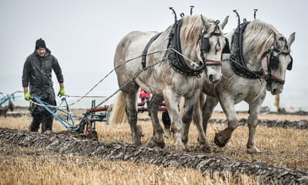 Vintage ploughing at the 68th British National Ploughing Championships in Warwickshire in October.