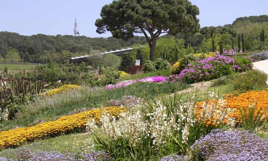 Array of colourful plants on the gently sloping hills of Jardi Botanic, Barcelona.