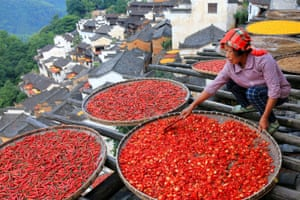 A woman dries chili peppers in Wuyuan county, Jiangxi province, China