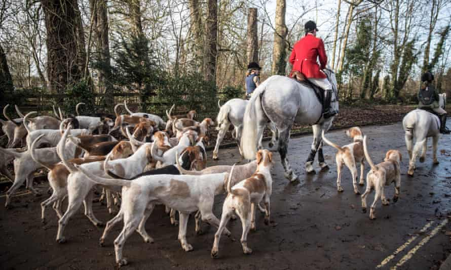 A hunter during a Boxing Day hunt.