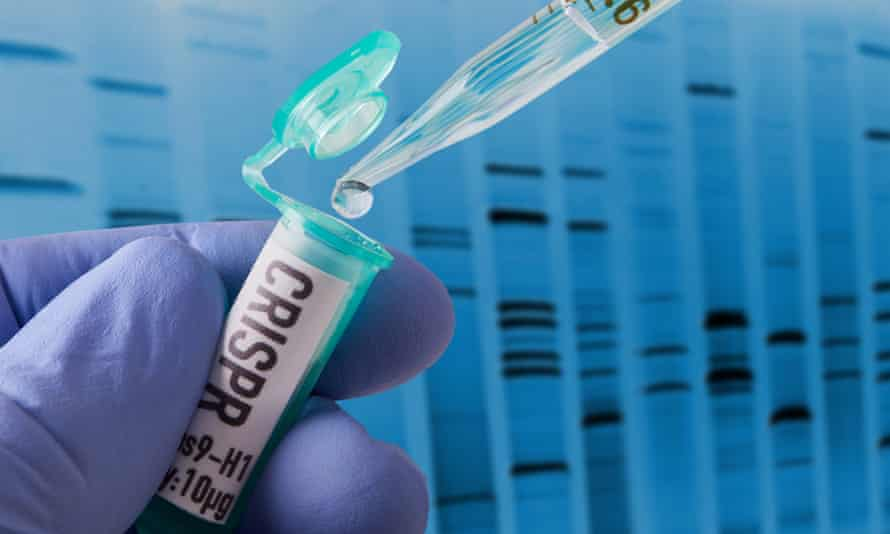 Crispr is one of the technologies that can change an organism's DNA.
