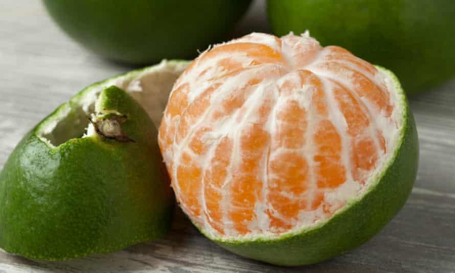 Green and peeled satsuma