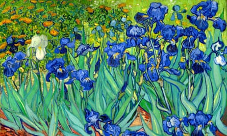 Irises by Vincent van Gogh. The new study suggests that the advantageous genes which confer creativity or intelligence may express themselves as illness when other risk factors are present.