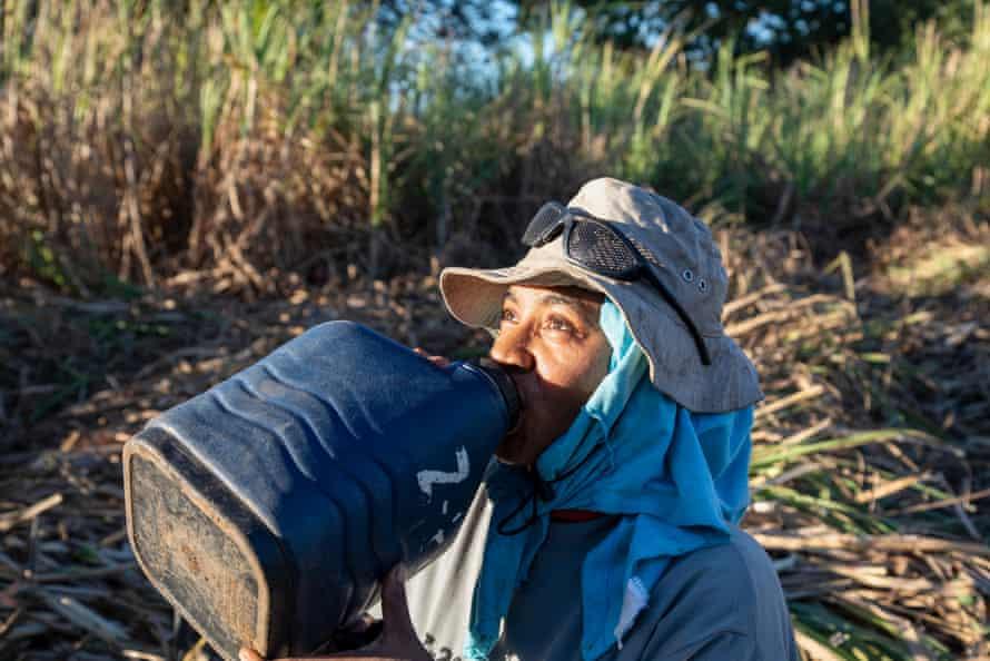 Rest break for sugarcane cutters in Nicaragua