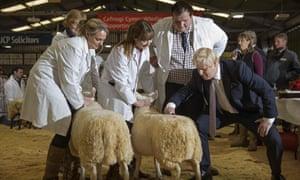 Boris Johnson poses with some sheep.