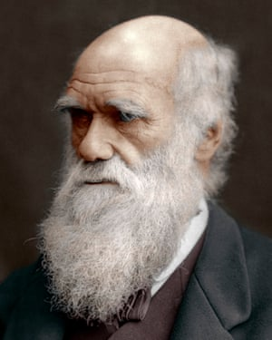 Charles Darwin photographed in 1878.