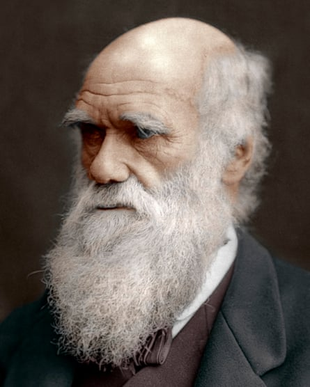 Charles Darwin: Victorian Mythmaker by AN Wilson – review ...