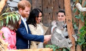 Prince Harry and Meghan meet a koala named Ruby and the koala joey named Meghan during a visit to Taronga Zoo