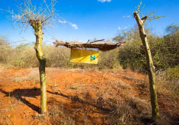 A beehive barrier on a farm near near Voi in southern Kenya.