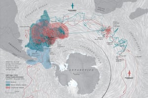 A map of albatross movement from Where the Animals Go.