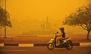 A woman rides a motorbike amid thick yellow haze caused by raging forest fires in Indonesia.