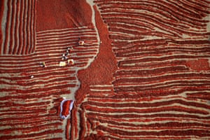 Aerial perspective of the red chilli harvest season in Bayingolin Mongol prefecture, Xinjiang, China, when farmers pick and leave millions of chillies to dry in the sun.