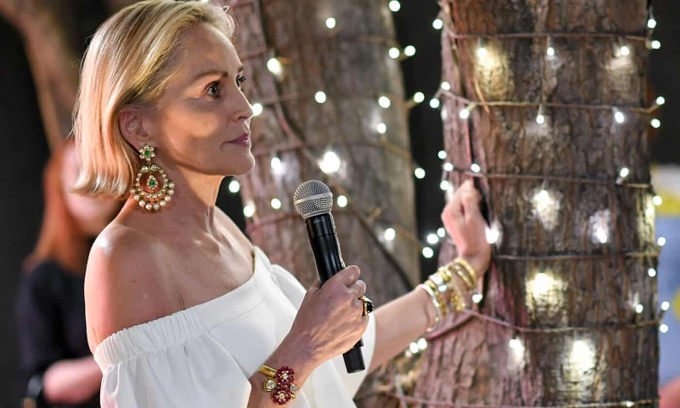 Sharon Stone: I was forgotten like Princess Diana after I had a stroke