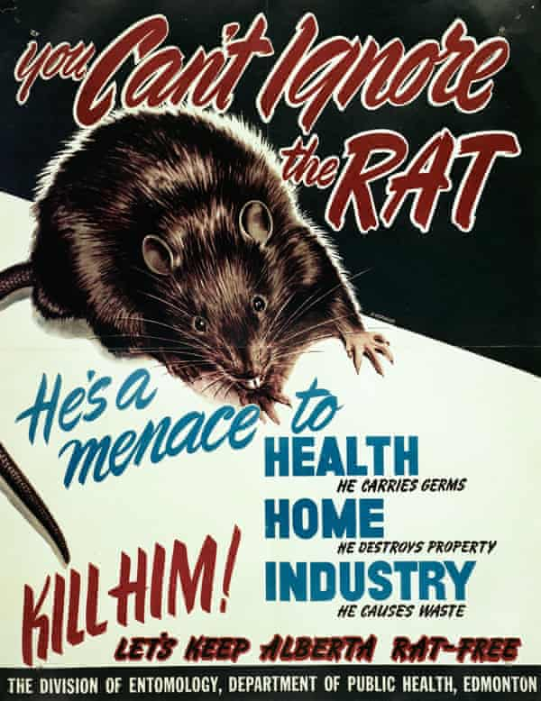 Rodent alert ... public health poster from 1948.