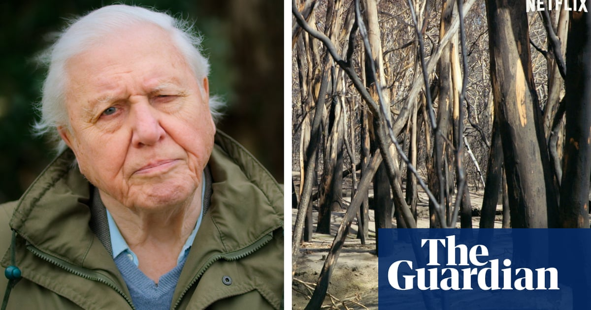 New David Attenborough film looks at Australia's bushfires and the climate crisis – video trailer
