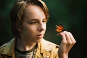 Ed Oxenbould in The Butterfly Tree, one of the anticipated highlights of the Melbourne international film festival.