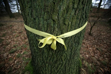 Protest ribbons are tied around trees in the Forest of Dean against government draft plans to privatise and sell off forests