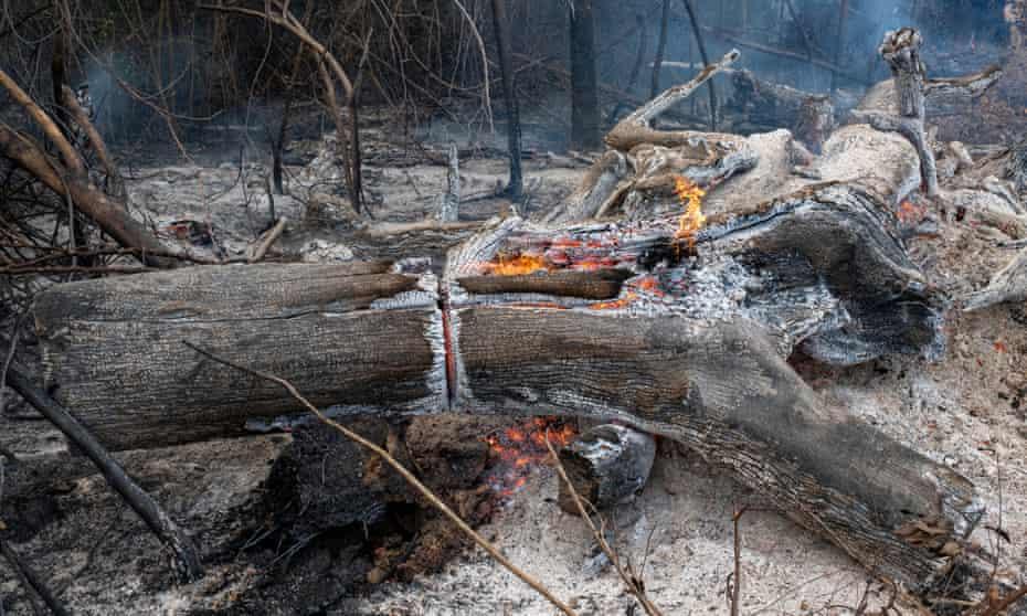 Fire on a farm in the region of Novo Progresso, Pará. 25 August 2020.