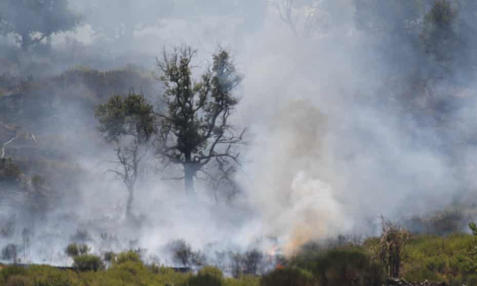 Temperatures have reached record heights in southern Italy, which has been badly hit by wildfires. Climate scientists say there is little doubt that climate change is driving extreme weather events.
