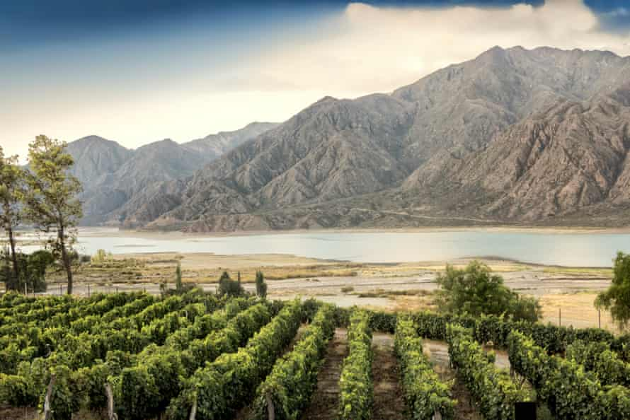 At 1380 meters above sea level in the Andes, Malbec is one of the few wines to thrive at such heights.