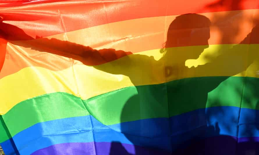 An activist's silhouette is seen through a rainbow flag during a Gay Parade in Kiev on May 25, 2013.