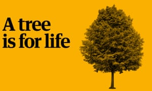 chjarity apppeal advert - A TREE IS FOR LIFE
