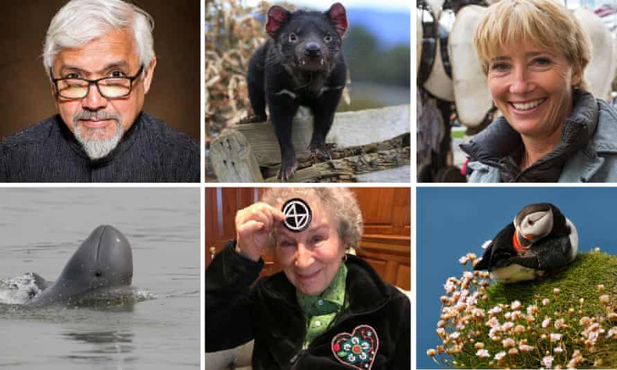 Amitav Ghosh and Irrawaddy dolphin; Margaret Atwood and Tasmanian devil; Emma Thompson and a puffin