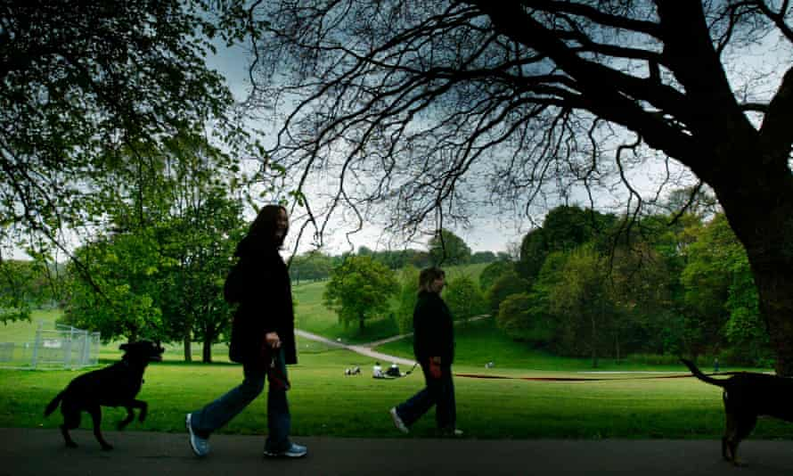 Jason Allen-Paisant meditates on suburban pastoral spaces ... dog walkers in Leeds.
