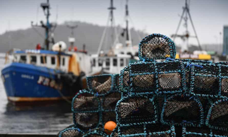 Fishing boats at Tarbert, Scotland