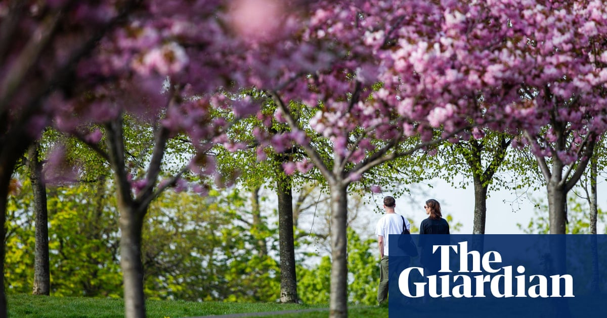 Glasgow to plant 18m trees as city readies for Cop26 climate summit