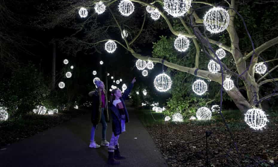 Branching out: Christmas at Kew Gardens.
