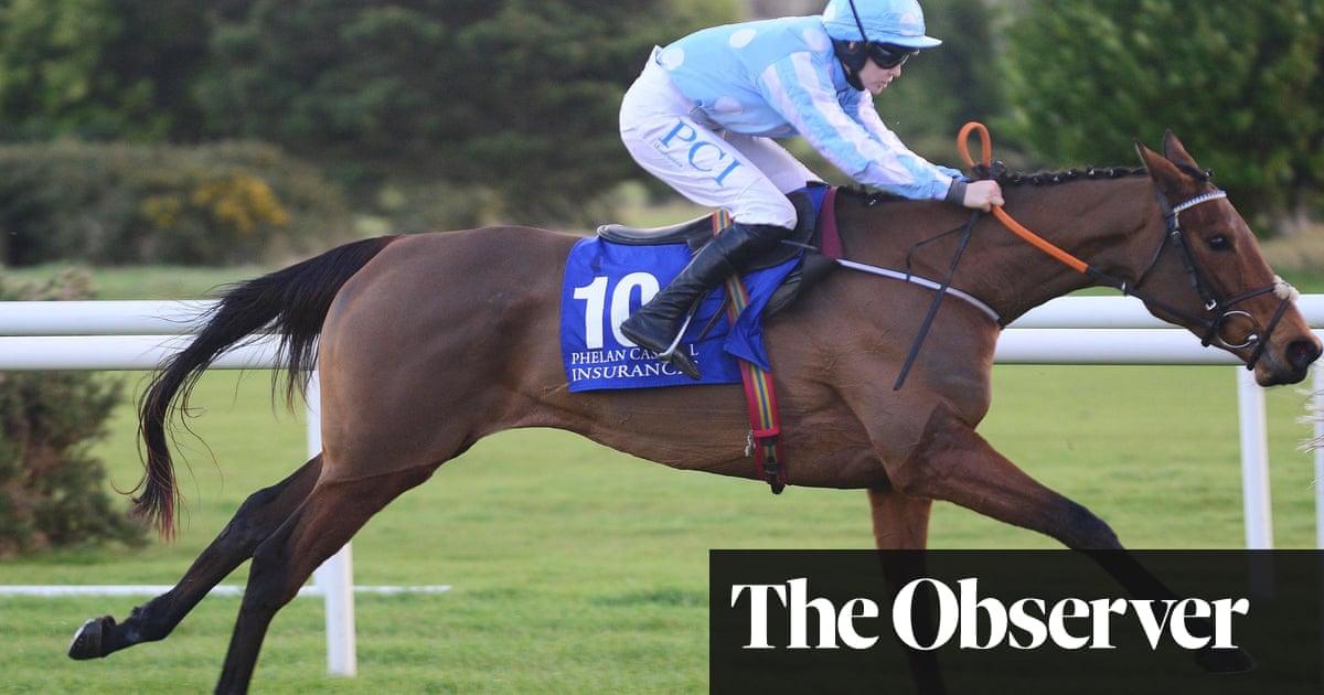 Honeysuckle lands Irish Champion Hurdle despite sketchy jumping