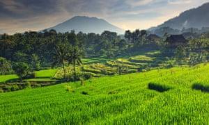 Sidemen Valley, Bali