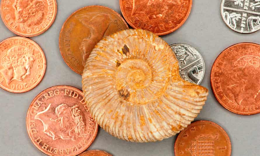 Literally tens of pence with an ammonoid fossil to highlight how bling bling the world of palaeontology has become