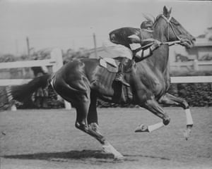 Phar Lap, the most famous Melbourne Cup winner