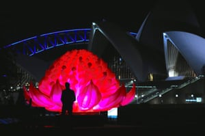 A man can be seen standing in front of an illuminated waratah flower installation during a preview at The Royal Botanic Garden for the upcoming Vivid Sydney festival of light and sound