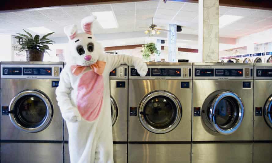 Easter Bunny in Laundrette