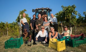 Grapes of wrath? Second Chance Summer: Tuscany.