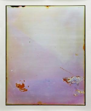 Desklamp, 2011-12, C-type photograph 105 x 83.8 cm, Art Gallery of New South Wales, Viktoria Marinov Bequest Fund 2013. © The artist
