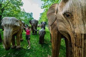 London, UKAn elephant herd Sculpted from dried Lantana Camara stalks wrapped over steel structures made by artist Shubhra Nayar and a collective of local artisans are displayed in Green Park as part the CoExistence campaign.