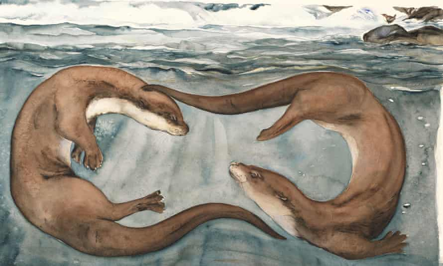 'The otter-spell slipped into my skull while I was walking over the Cairngorms.'