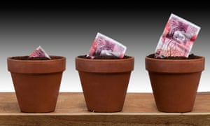 plant pot with 50 pound notes growing