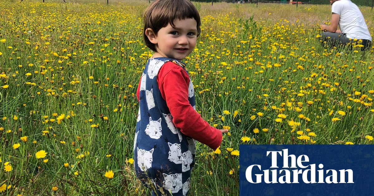 Wildflower meadow on tennis courts bulldozed by Norwich council